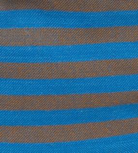 Blue-brown stripes